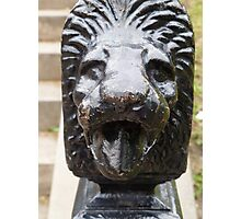 lion mouth Photographic Print