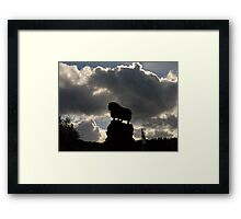 Lord of the Rams Framed Print