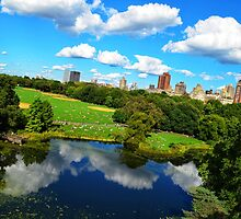 Central Park by Luis Miguel