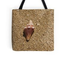 Seashell on the shore of St Croix, US Virgin Islands Tote Bag