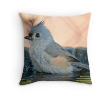 Day at the Spa Throw Pillow