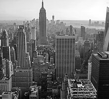 Skylines - Manhattan, New York, USA by Sean Farrow