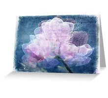 Orchid dimensions  Greeting Card