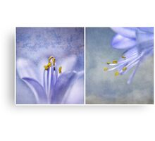 The Blues ~ Canvas Print