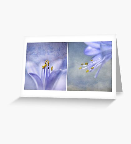 The Blues ~ Greeting Card