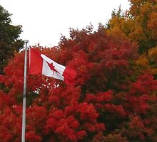 Happy Thanksgiving Canada! Dedicated to my fellow Canadians and ex-pats by MarianBendeth