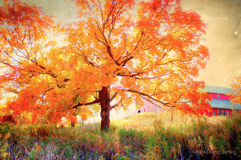 Caution: Fall ahead by Angela King-Jones