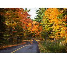 Autumn Colours 5 - MacKenzie-King Estate Photographic Print