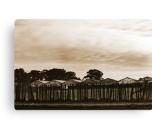 Dull and Brown Canvas Print