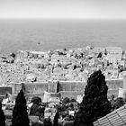 Dubrovnik Old City Panorama - BW by lesslinear