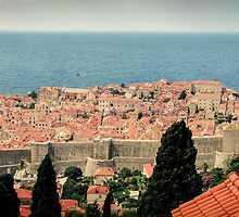 Dubrovnik Old City Panorama by lesslinear