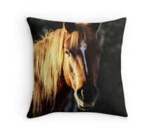 Golden Horse Portrait Photo Throw Pillow