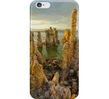 Mono Lake iPhone Case/Skin