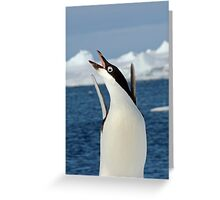 Penguin Dancing Greeting Card