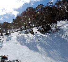 Snowy slope near Perisher by Catherine Davis