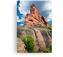 rock beauty  Canvas Print