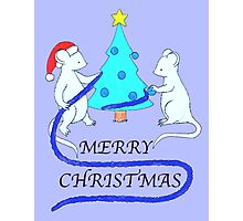 Christmas Mice Photographic Print