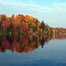 Autumn Shoreline by Brian Pelkey