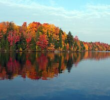 Autumn Shoreline by Brian Pelkey