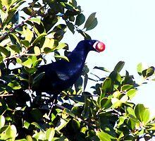 Stollen fruit by valdez