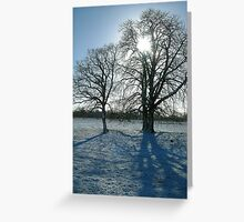 Winter trees in Oxford. Greeting Card