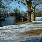 River Cherwell meets the Thames. by Mike Lester