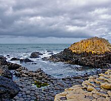 Giants Causeway by Michelle McMahon