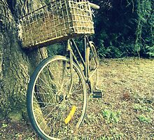 Vintage Bicycle by Judi Rustage