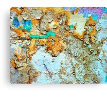 Decay in the woods Canvas Print