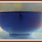 the bowl by Lynne Prestebak