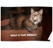 Whut Iz That Smellz? Poster