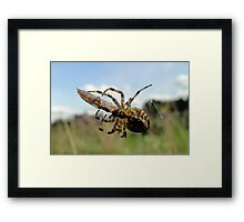 Whole New Meaning To Packed Lunch Framed Print