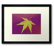Autumn leaf fine art Framed Print