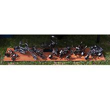 Miniature Sculptures  Photographic Print