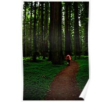 Among the Redwoods Poster