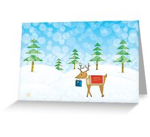 Christmas Card - Special Delivery Greeting Card