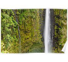 Akaka Falls Hawaii Poster