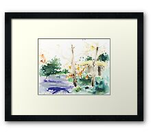 Vermont Forest Framed Print