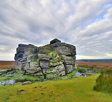 Dartmoor: Early Morning at South Hessary Tor by Rob Parsons