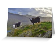 The Lake District: Life on the Edge Greeting Card