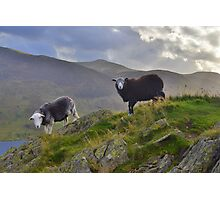 The Lake District: Life on the Edge Photographic Print
