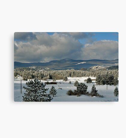 Snowy Scene Canvas Print