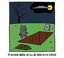 dead in grave Photographic Print