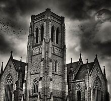 St Saviour's Cathedral by Dianne English
