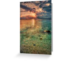 Starfish sunset Greeting Card