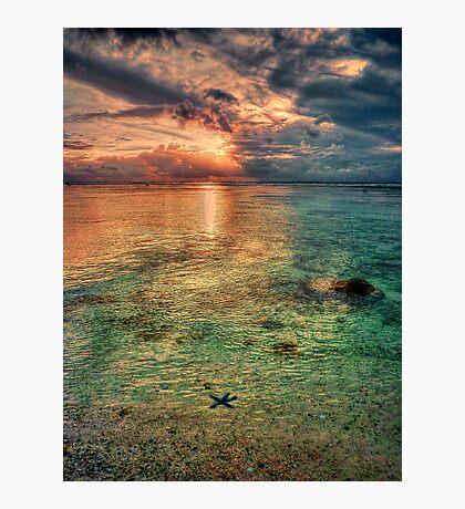 Starfish sunset Photographic Print