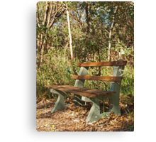 Bench in the Bush Canvas Print