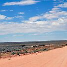 Journey to Lake Eyre #05 by Helen Eaton