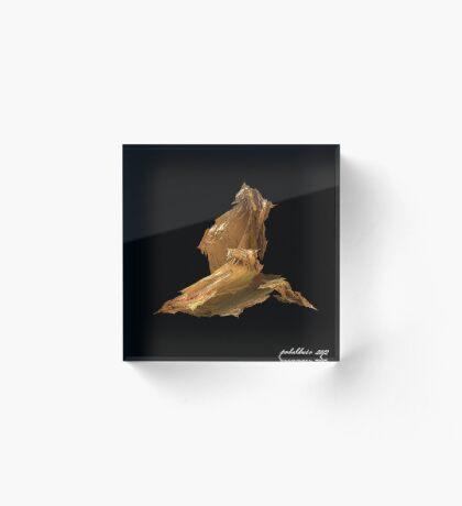 """""""Dancer 5"""" Acrylic Block"""