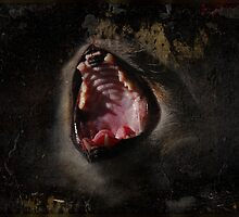 Scream!! by jodi payne